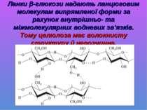 Ланки β-глюкози надають ланцюговим молекулам випрямленої форми за рахунок вну...