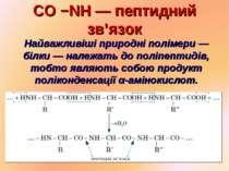 CO −NH — пептидний зв'язок Найважливіші природні полімери — білки — належать ...