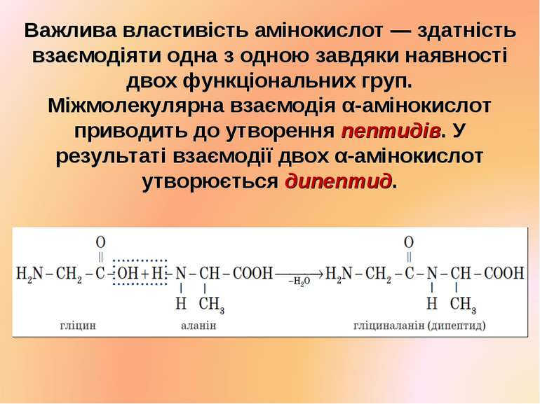 Важлива властивість амінокислот — здатність взаємодіяти одна з одною завдяки ...