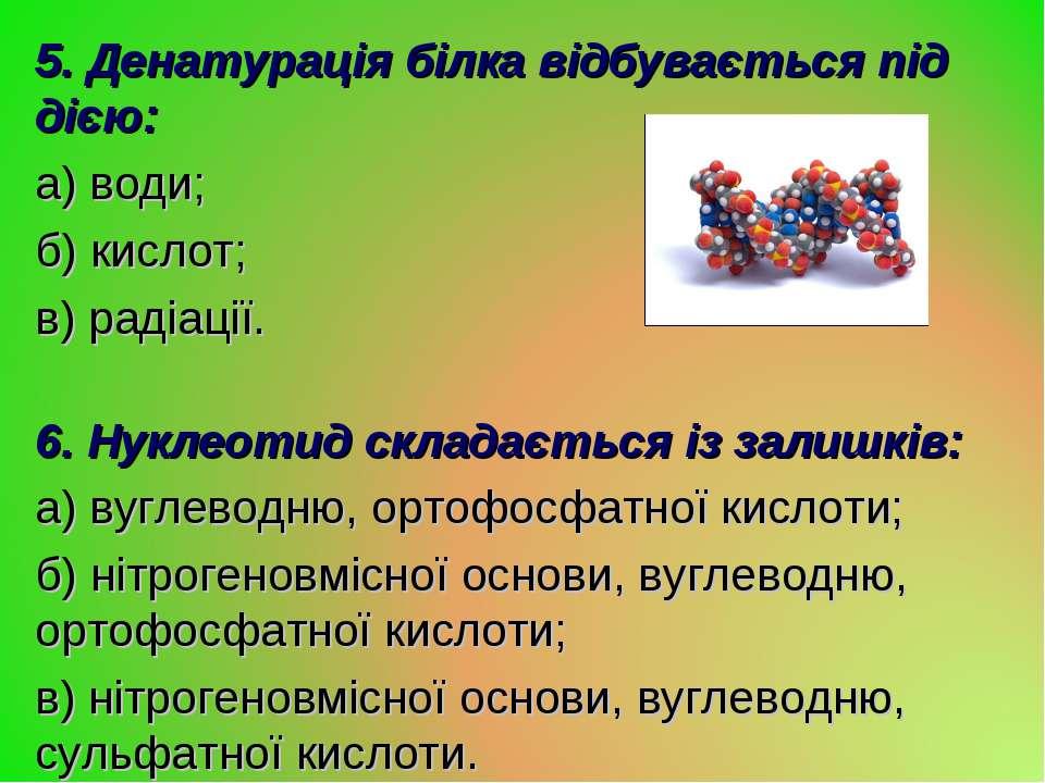 5. Денатурація білка відбувається під дією: а) води; б) кислот; в) радіації. ...
