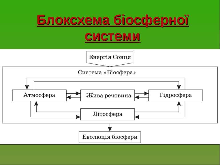 Блоксхема біосферної системи