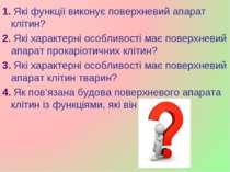 1. Які функції виконує поверхневий апарат клітин? 2. Які характерні особливос...