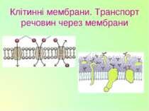 Клітинні мембрани. Транспорт речовин через мембрани