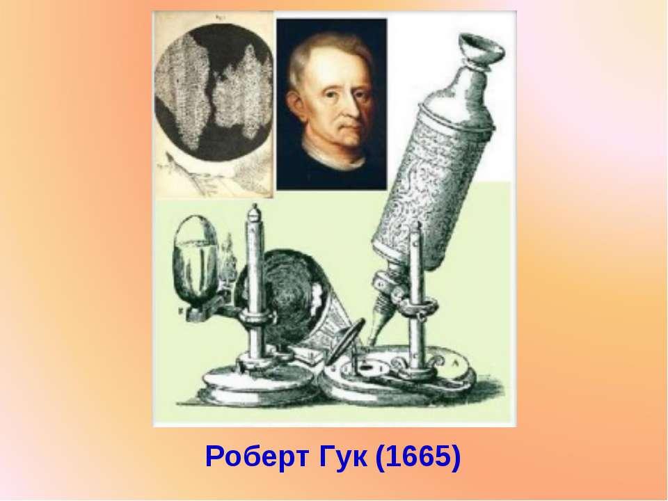 Роберт Гук (1665)