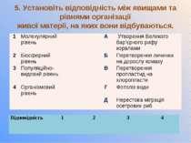 5. Установіть відповідність між явищами та рівнями організації живої матерії,...