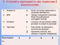 5. Установіть відповідність між термінами й визначеннями. 1 Ферменти А Білки,...
