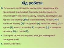 3. Розгляньте послідовність нуклеотидів, надану вам для проведення транскрипц...