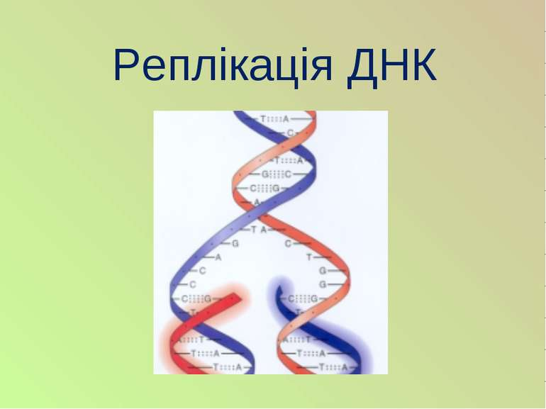 Реплікація ДНК