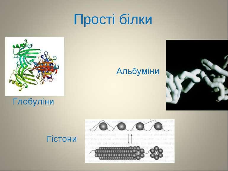 Прості білки Альбуміни Глобуліни Гістони