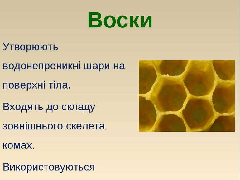Воски Утворюють водонепроникні шари на поверхні тіла. Входять до складу зовні...