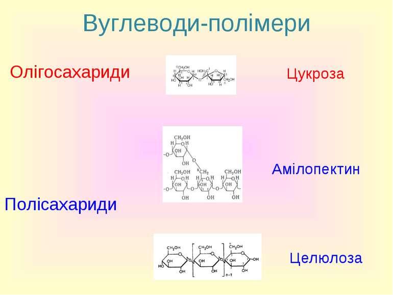Вуглеводи-полімери Олігосахариди Цукроза Полісахариди Амілопектин Целюлоза