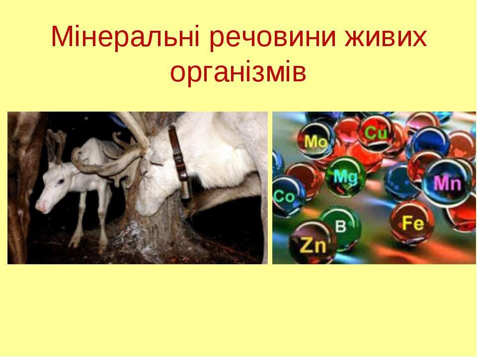 Мінеральні речовини живих організмів