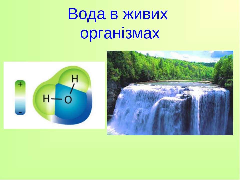 Вода в живих організмах