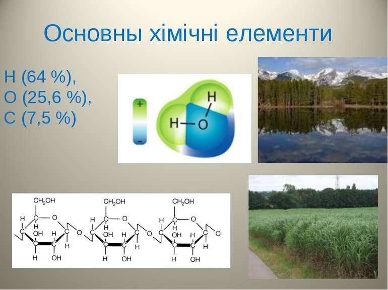 Основны хімічні елементи H (64 %), O (25,6 %), C (7,5 %)