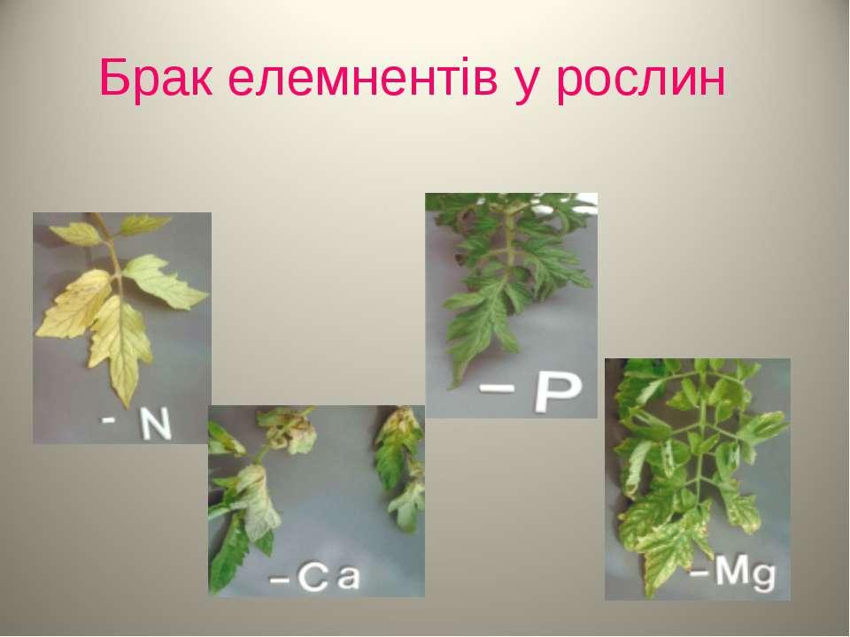 Брак елемнентів у рослин