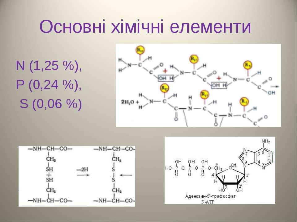 Основні хімічні елементи N (1,25 %), P (0,24 %), S (0,06 %)