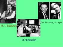 М. І. Вавілов Я. Флемінг Дж. Вотсон, Ф. Крік