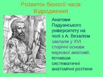 Розвиток біології часів Відродження Анатоми Падуанського університету на чолі...