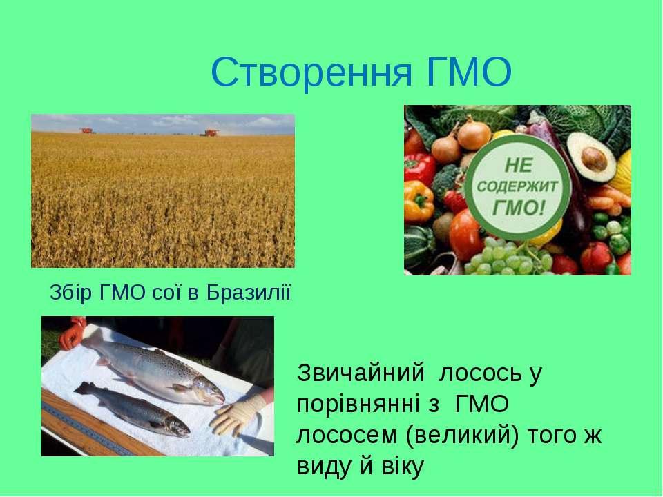Створення ГМО Збір ГМО сої в Бразилії Звичайний лососьу порівнянні з ГМО л...