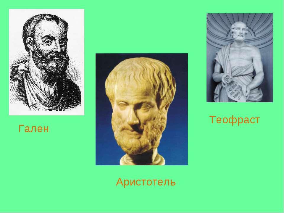 Гален Аристотель Теофраст