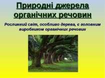 Природні джерела органічних речовин Рослинний світ, особливо дерева, є головн...