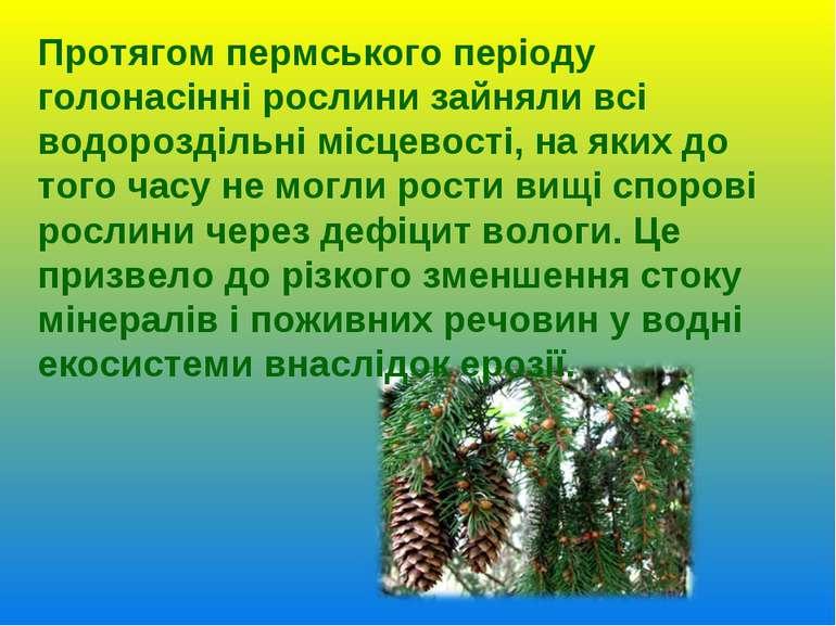 Протягом пермського періоду голонасінні рослини зайняли всі водороздільні міс...
