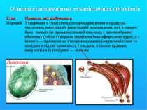 Основні етапи розвитку еукаріотичних організмів Етап Процеси, які відбувалися...