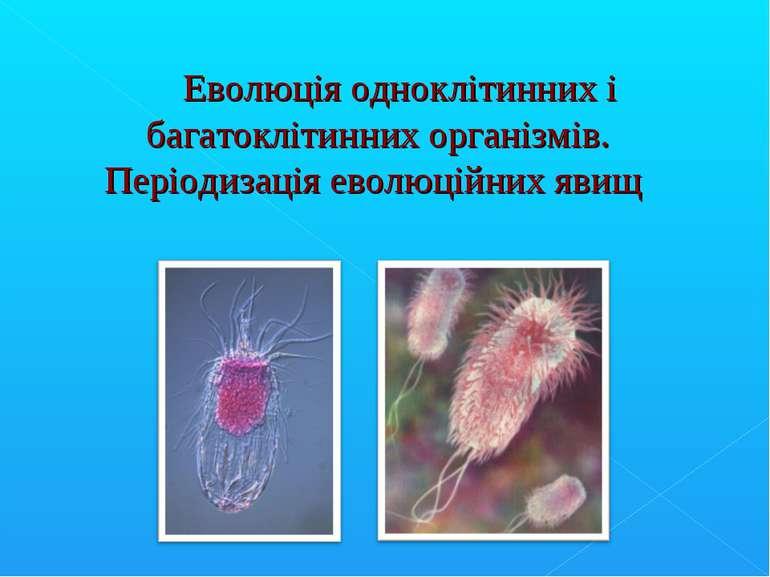 Еволюція одноклiтинних і багатоклітинних організмів. Перiодизація еволюційних...