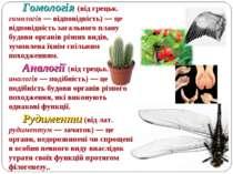 Гомологія (від грецьк. гомологія — відповідність) — це відповідність загально...