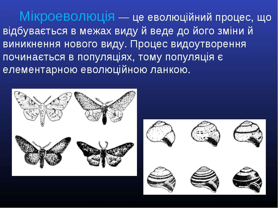 Мікроеволюція — це еволюційний процес, що відбувається в межах виду й веде до...