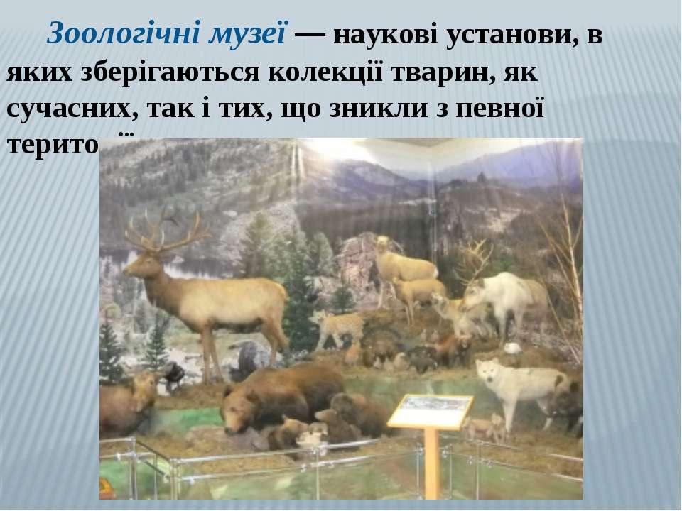 Зоологічні музеї — наукові установи, в яких зберігаються колекції тварин, як ...