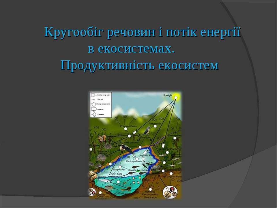 Кругообіг речовин і потік енергії в екосистемах. Продуктивність екосистем