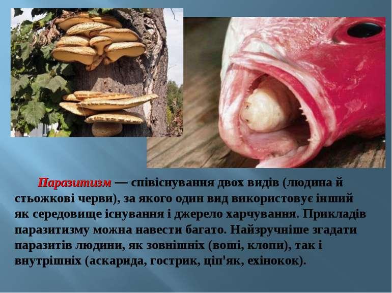 Паразитизм — співіснування двох видів (людина й стьожкові черви), за якого од...