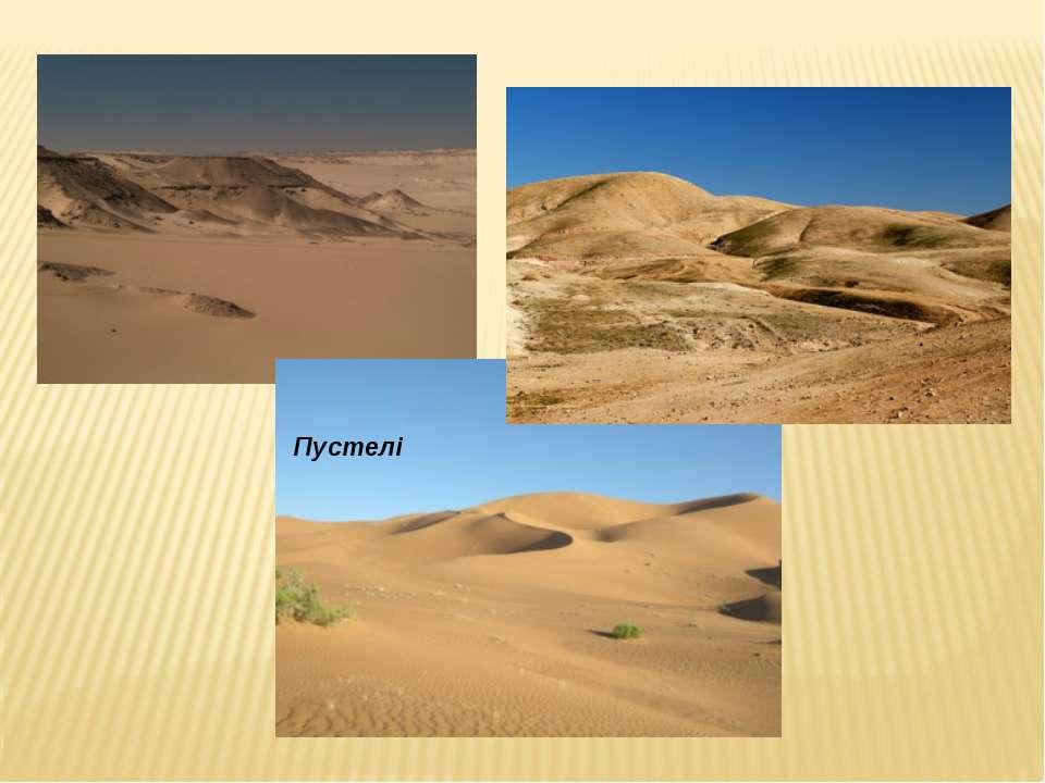 Пустелі