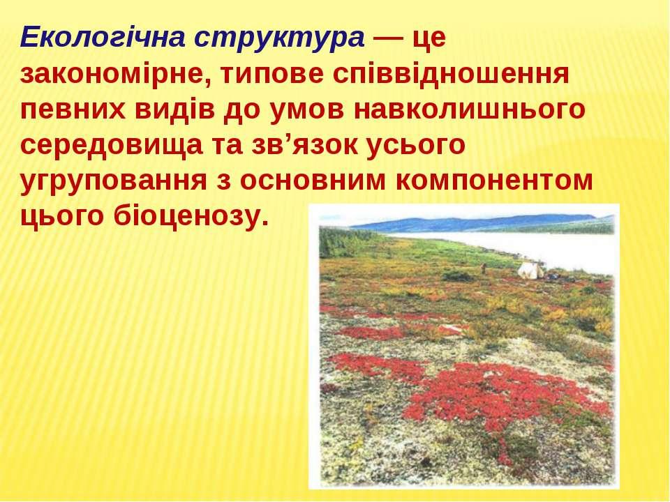 Екологічна структура — це закономірне, типове співвідношення певних видів до ...