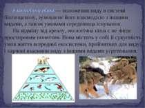 Екологічна ніша — положення виду в системі біогеоценозу, зумовлене його взаєм...