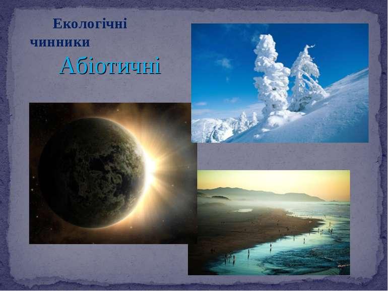 Екологічні чинники Абіотичні