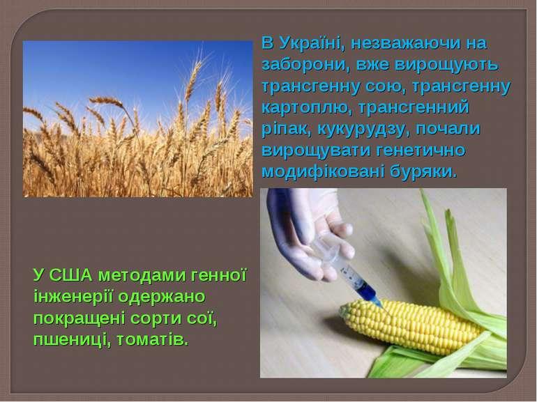 В Україні, незважаючи на заборони, вже вирощують трансгенну сою, трансгенну к...