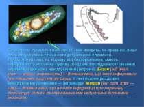 До оперону еукаріотичних організмів входить, як правило, лише один структурни...