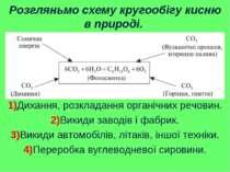 Розгляньмо схему кругообігу кисню в природі. 1)Дихання, розкладання органічни...