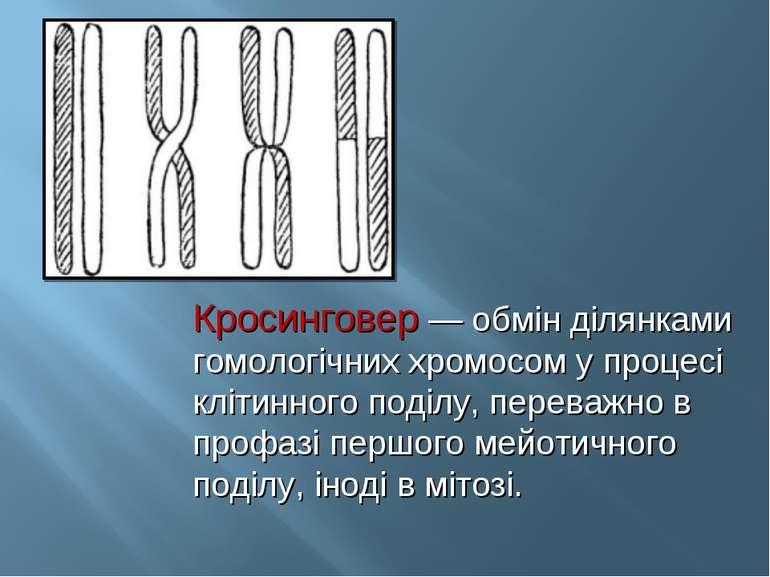 Кросинговер — обмін ділянками гомологічних хромосом у процесі клітинного поді...