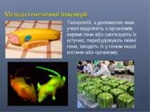 Методи генетичної інженерії Технології, з допомогою яких учені виділяють з ор...