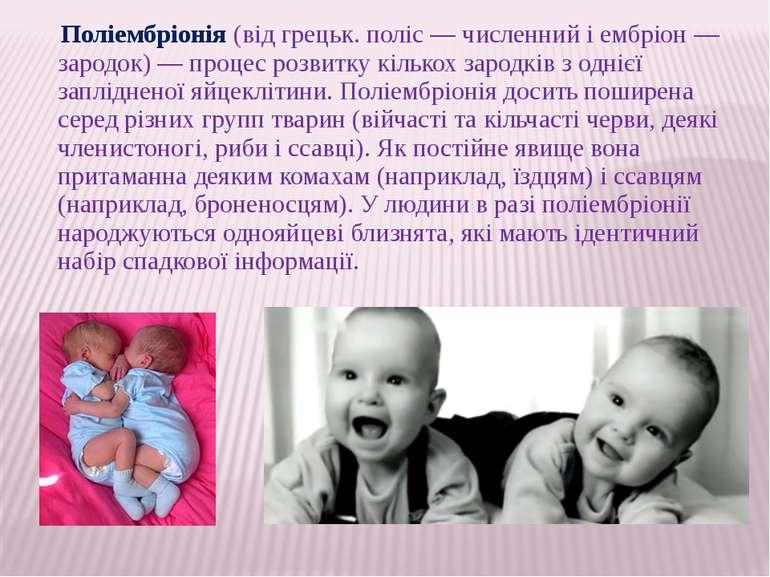 Поліембріонія (від грецьк. поліс — численний і ембріон — зародок) — процес ро...
