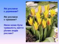 Які рослини є деревами? Які рослини є травами? Якою може бути тривалість житт...