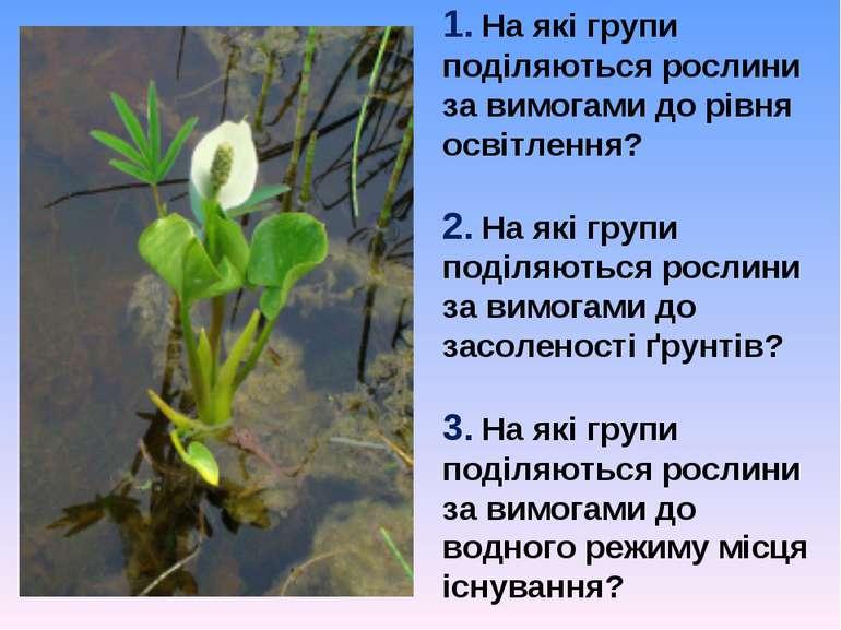 1. На які групи поділяються рослини за вимогами до рівня освітлення? 2. На як...