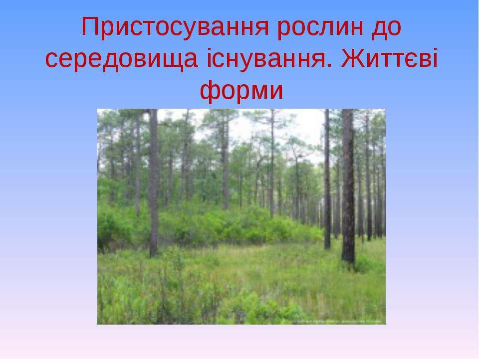 Пристосування рослин до середовища існування. Життєві форми