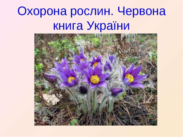 Охорона рослин. Червона книга України