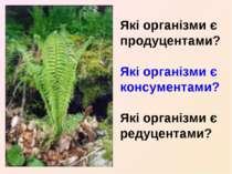 Які організми є продуцентами? Які організми є консументами? Які організми є р...