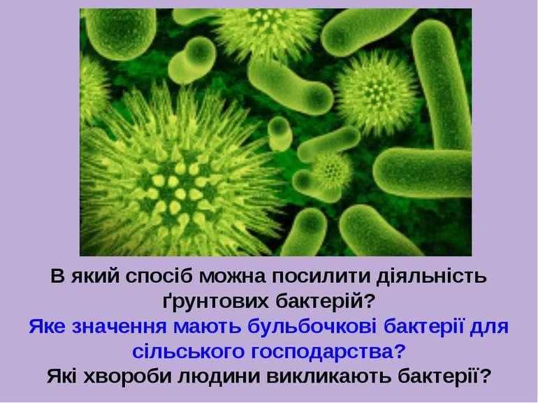 В який спосіб можна посилити діяльність ґрунтових бактерій? Яке значення мают...