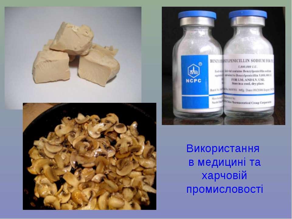 Використання в медицині та харчовій промисловості